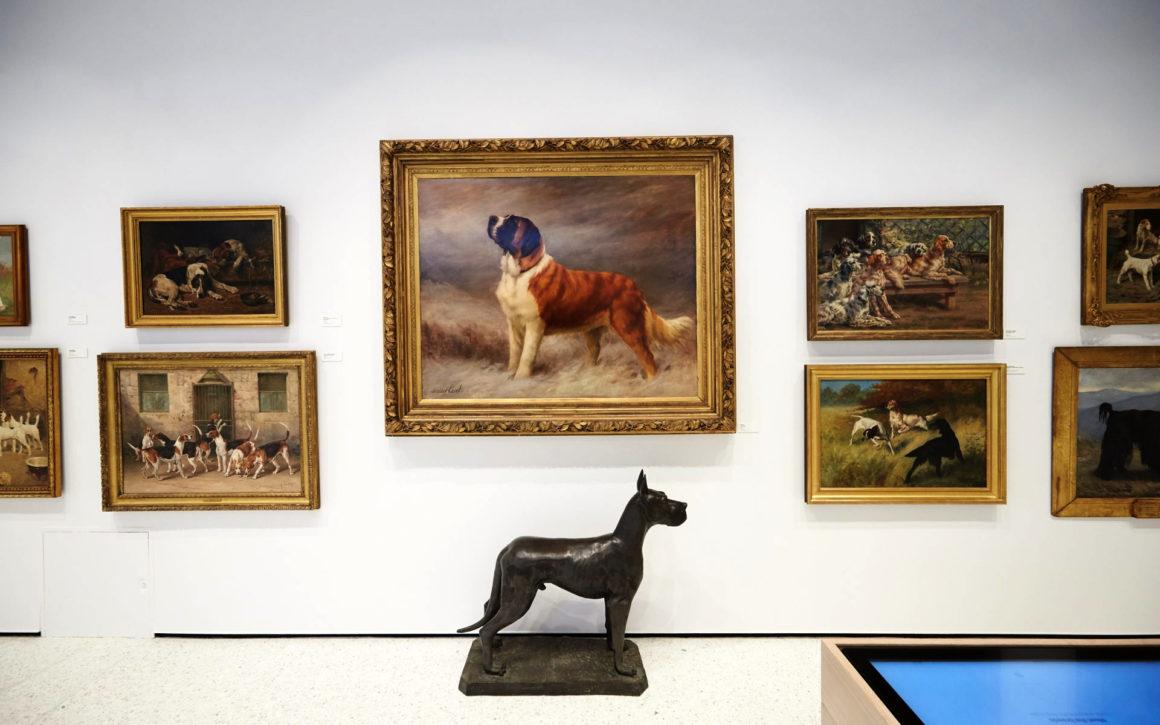 Museo Del Perro En Nueva York Chismes Today